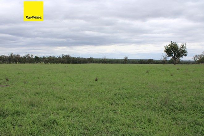 Picture of 147 Grove Road, INVERELL NSW 2360
