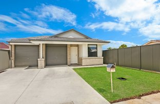 Picture of 1c Athol Street, Clovelly Park SA 5042