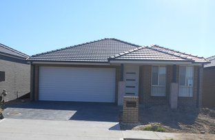 Picture of Lot 35 Greenberg Street, Spring Farm NSW 2570