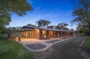 Picture of 195 Adams  Street, Jindera NSW 2642