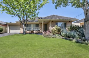 Picture of 4 Glandore Avenue, Clovelly Park SA 5042