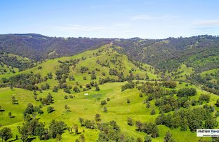 "Picture of ""BRIDLEVALE"" 83 Nuggety Gully Road, Nowendoc NSW 2354"