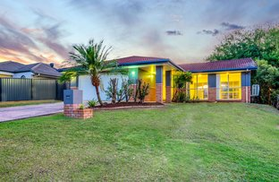 Picture of 43 Fawn Street, Upper Coomera QLD 4209