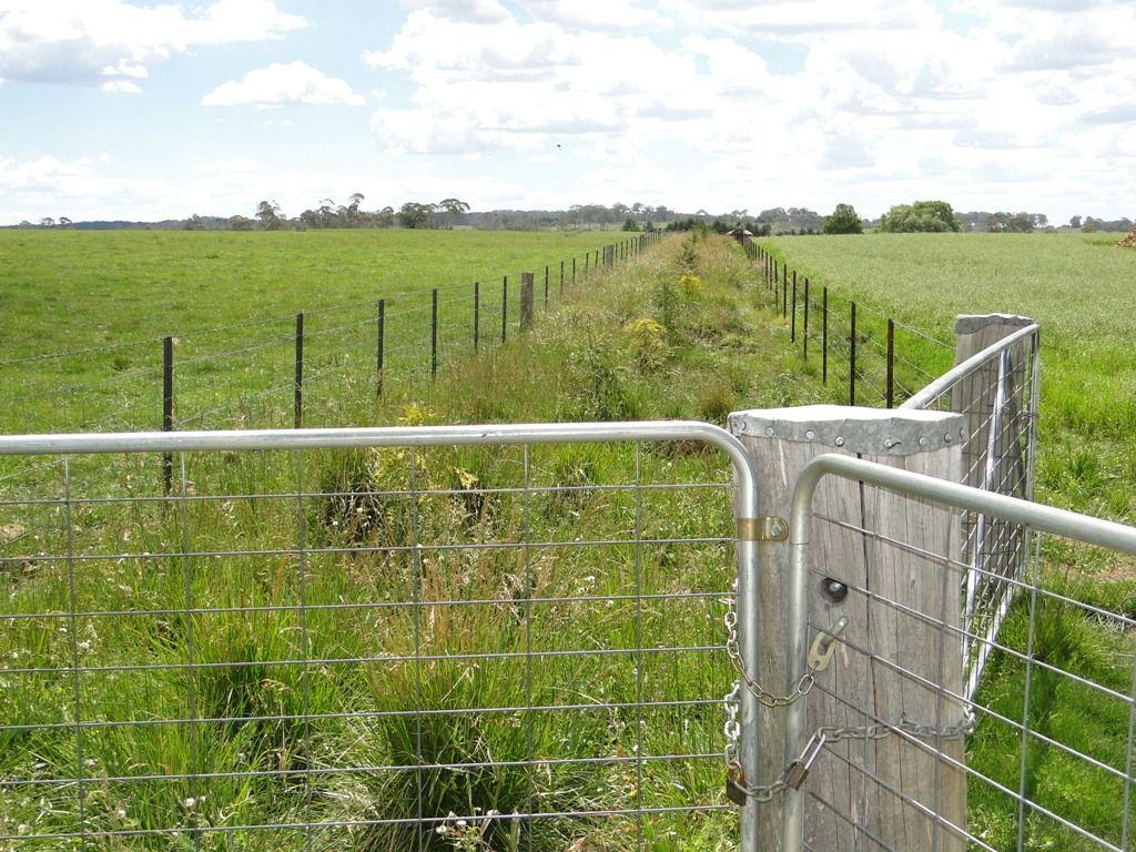 Hilltop Worra Street, Guyra NSW 2365, Image 1