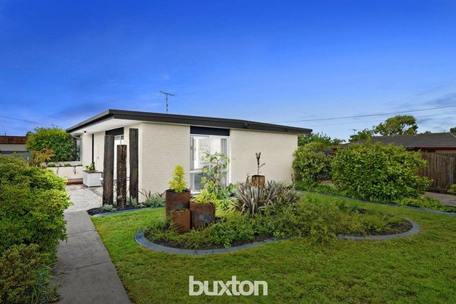 Picture of 15 Grafton Street, ST ALBANS PARK VIC 3219