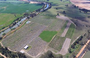 Picture of Barooga NSW 3644