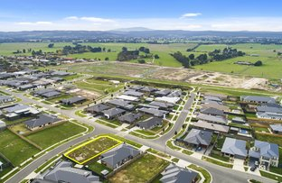 Picture of 24 Cambridge Way, Traralgon VIC 3844