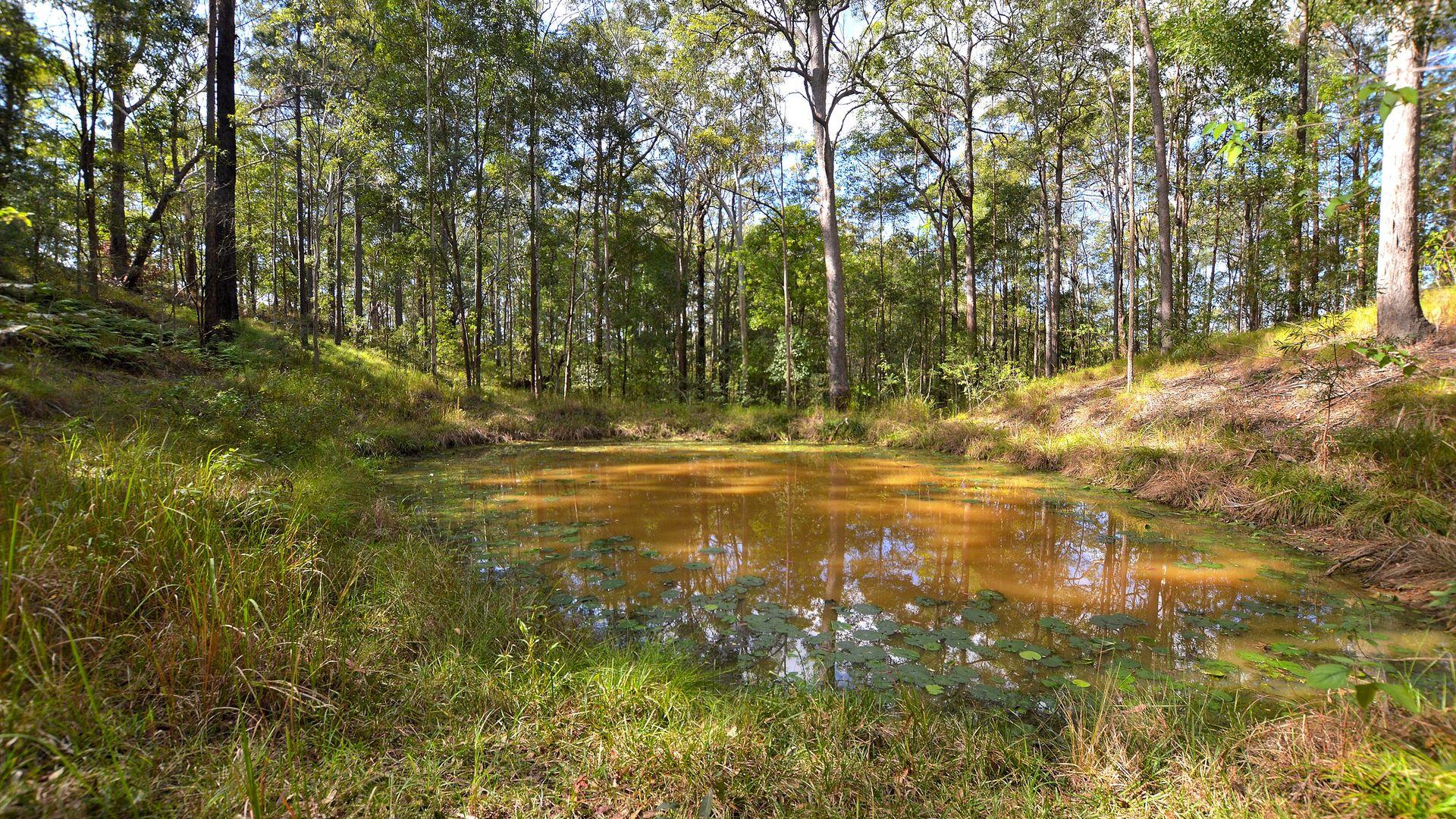 20 Ramberts Rd, Eudlo QLD 4554, Image 1
