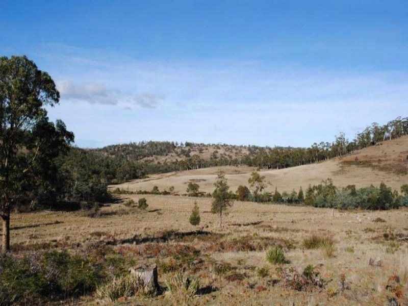 Lot 1 Triangle Marsh Road, Swansea TAS 7190, Image 2