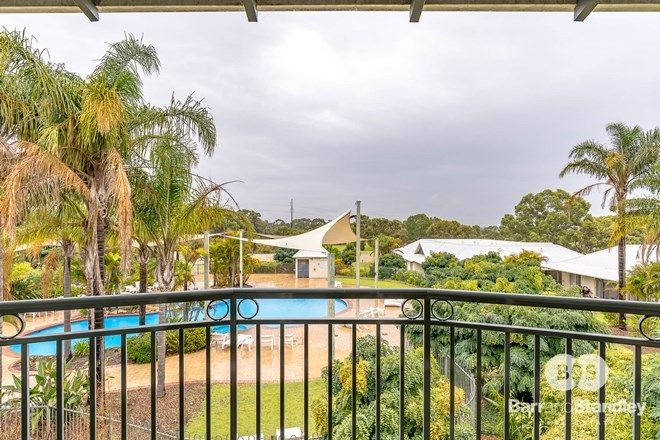 Picture of 36/105 Old Coast Road, PELICAN POINT WA 6230