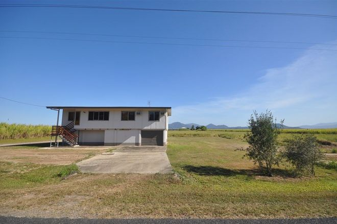Picture of 291 Cooks Lane, VICTORIA PLANTATION QLD 4850
