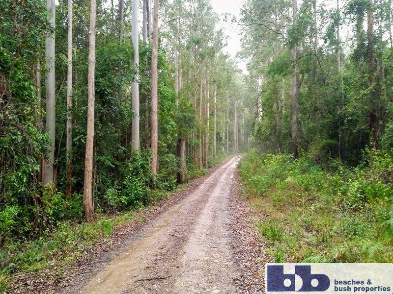 211 Saggers Creek Road, Stroud NSW 2425, Image 2