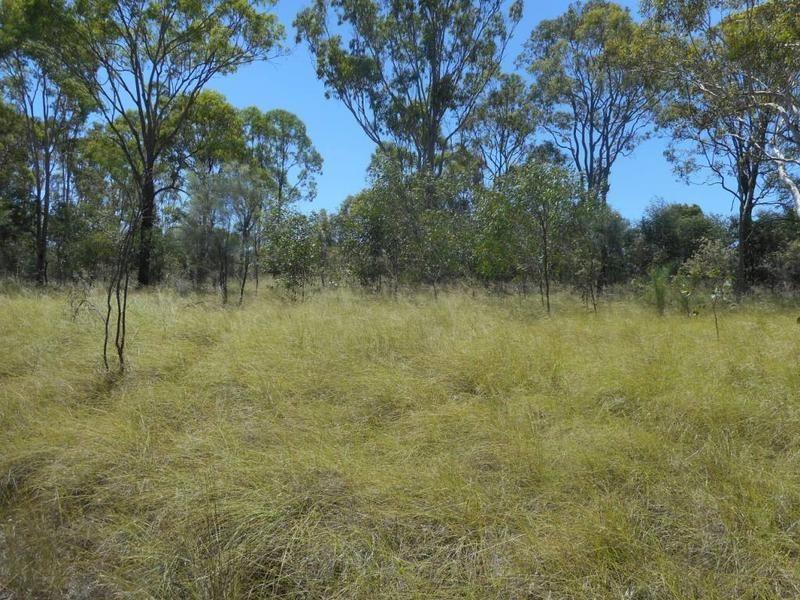 Lot 6 Kingaroy Cooyar, Tarong QLD 4615, Image 0