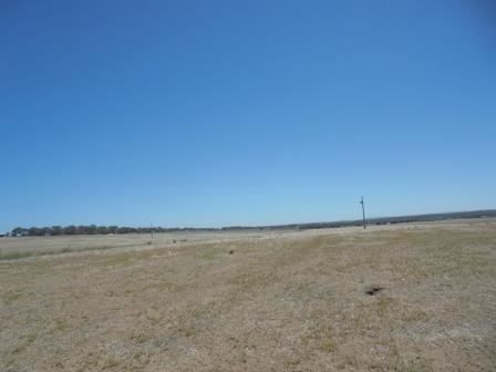 Lot 7 Calytrix View, Bonniefield WA 6525, Image 2