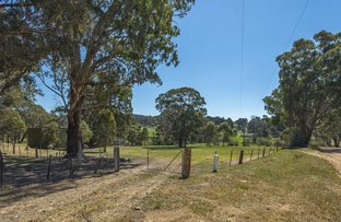 Picture of 246 Old Drummond Road, Taradale VIC 3447