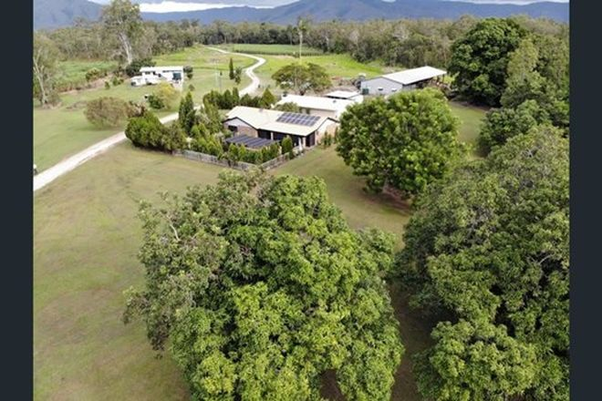 Picture of 111 Messmate Road, UPPER STONE QLD 4850