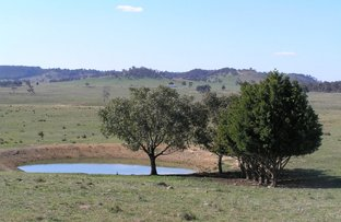 Picture of 90 Bylong Valley Way, Mudgee NSW 2850