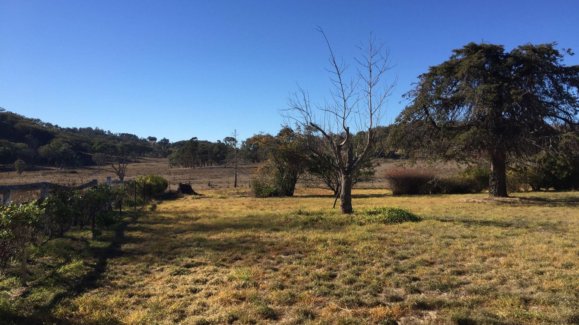 3 ''Birralee Homestead'', Bendemeer NSW 2355, Image 2