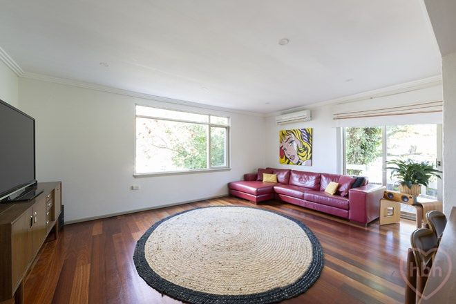 Picture of 35 Cassinia Street, O'CONNOR ACT 2602