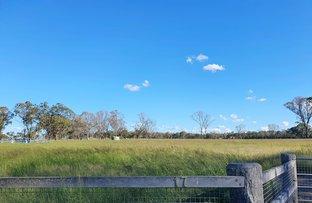 Picture of 17 Hendon Victoria Hill Road, Allora QLD 4362