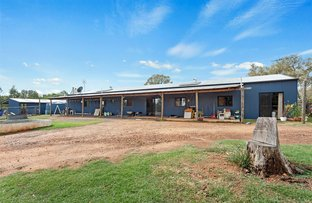 Picture of 26 Wirraway Avenue, Leyburn QLD 4365