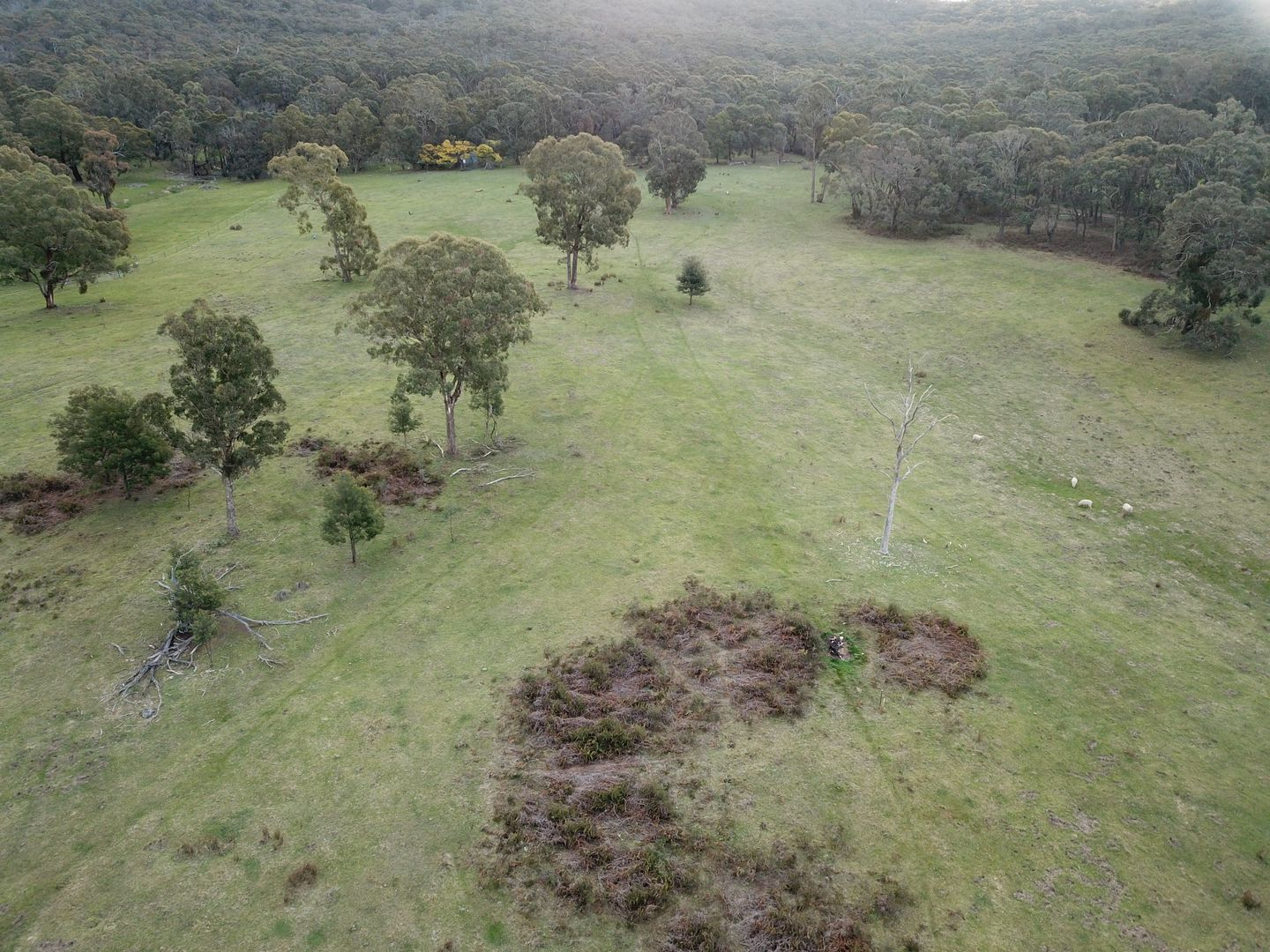 C/A 7D Maguire Rd, Waterloo VIC 3373, Image 0