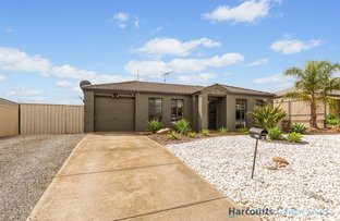 Picture of 5 Arthur Street, Blakeview SA 5114