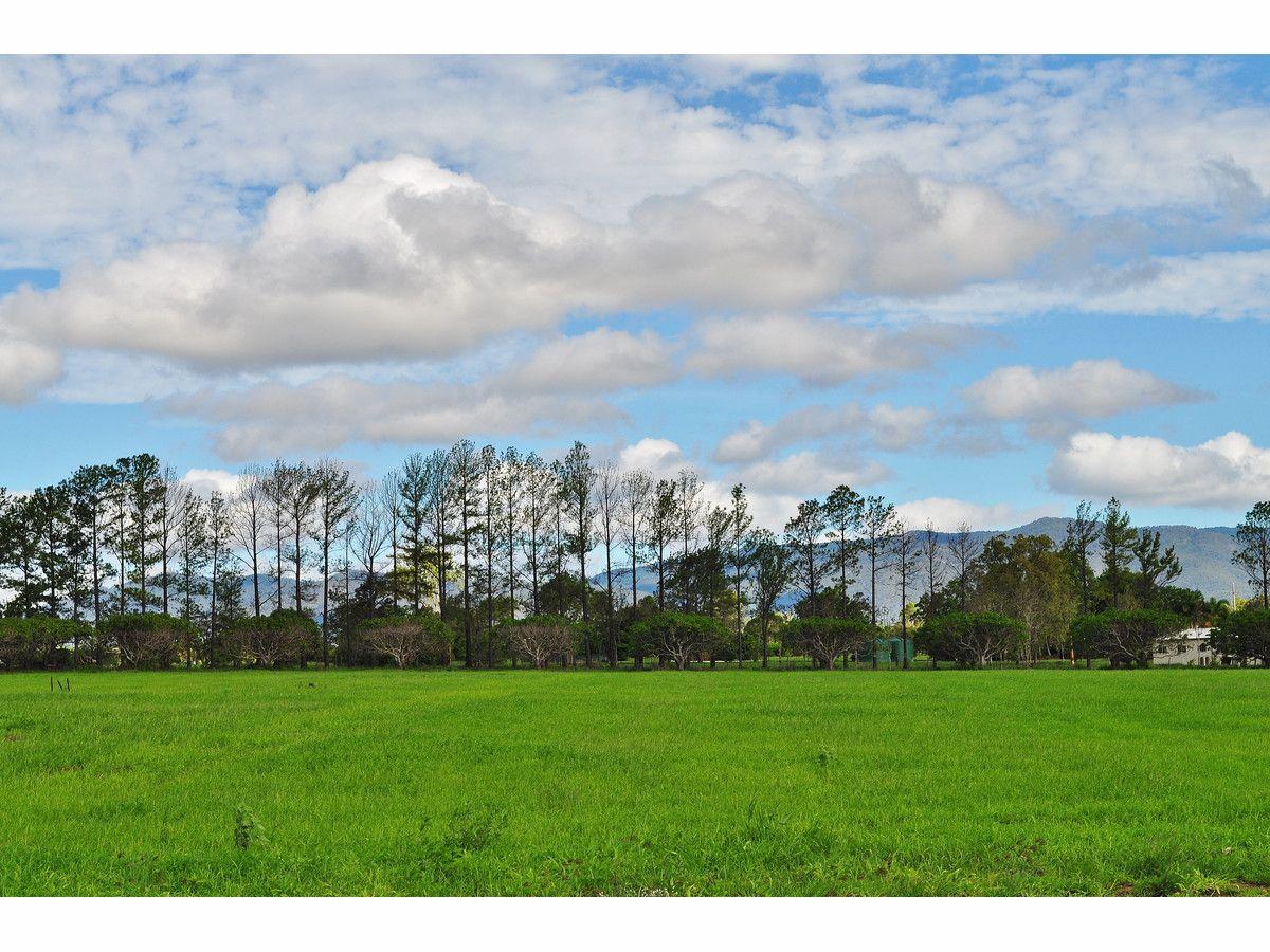 Lot 306 Bellevue Estate, Mareeba QLD 4880, Image 2