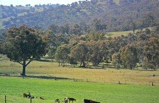 45 Rays Road, Nangus NSW 2722