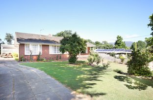 Picture of 69 Badger Creek Road, Healesville VIC 3777