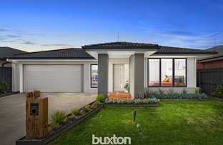 Picture of 31 Phalaris Park Drive, Lovely Banks VIC 3213