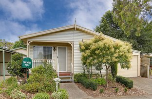 Picture of 109/16-24  Box Forest Road, Glenroy VIC 3046