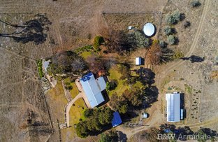 Picture of 253 Burns Rd, Armidale NSW 2350
