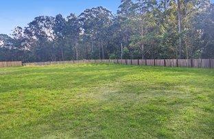 Picture of 17 Jarrah Way, Landsborough QLD 4550