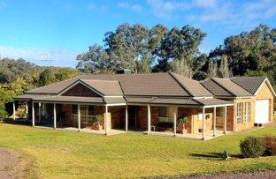 81 Gooloogong Road, Grenfell NSW 2810
