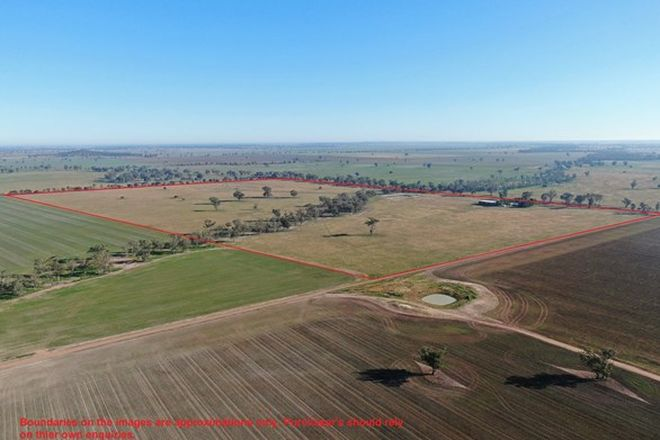 Picture of 2686 Mary Gilmore Way, TEMORA NSW 2666