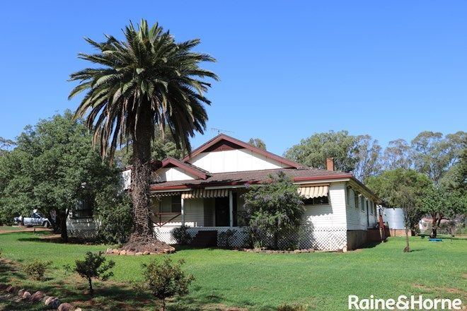 Picture of 236 Wild Lane, ALECTOWN NSW 2870