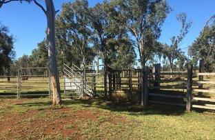 Picture of Bellbird Road, Kingaroy QLD 4610