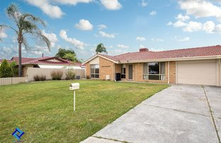 Picture of 16A Majestic Court, Thornlie WA 6108