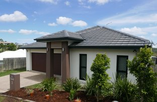 Picture of 3 Tabei Place , Springfield QLD 4300