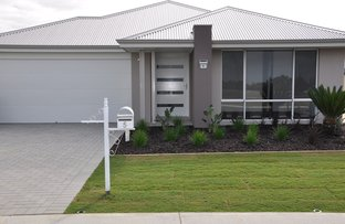 Picture of 5  Lyra Way , Australind WA 6233