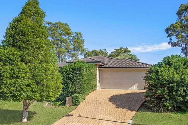 Picture of 8 Catani Court, WARNER QLD 4500