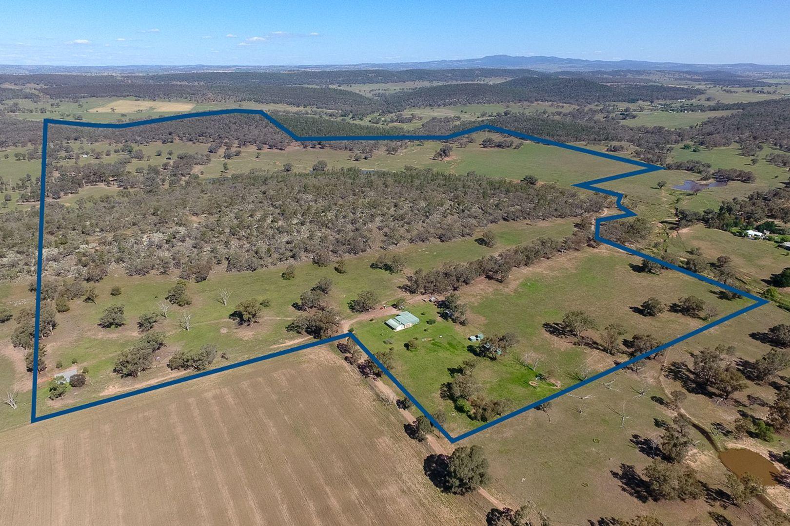 97 Pecks Road, Molong NSW 2866, Image 2