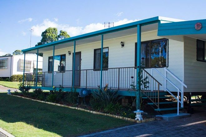 Picture of 48/530 Pine Ridge Road, COOMBABAH QLD 4216