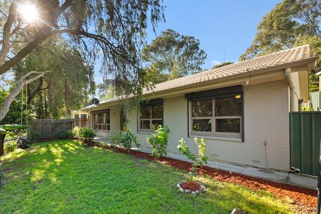 Picture of 54 Glenwood Drive, BELLEVUE HEIGHTS SA 5050