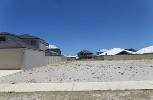 Picture of 13 Whitehorses Drive, Burns Beach WA 6028
