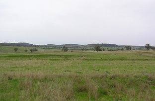 Picture of 5968 Goolhi Rd, Mullaley NSW 2379