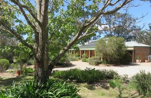 Picture of 645 Amiens Rd, Amiens QLD 4380