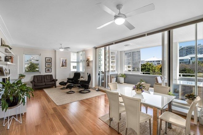 Picture of 31/1 Rosewater Circuit, BREAKFAST POINT NSW 2137