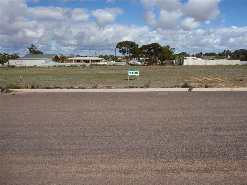 26 Woodrup Road, Wudinna SA 5652, Image 0